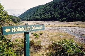 Hallelujah-Biv-Sign