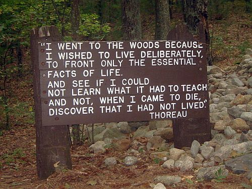 an biography of walden pond Henry david thoreau was an american writer,  thoreau went to live at a small cabin near walden pond,  - henry david thoreau biography.
